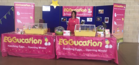 Eggucation Stand at Springtime Live